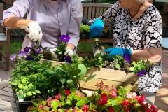 Village-Apts-planting-2018