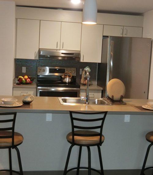 village_kitchen